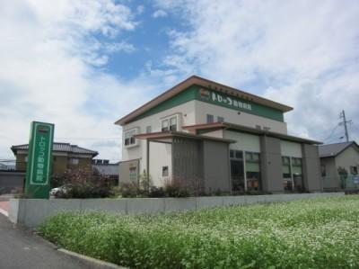 8.29 蕎麦開花と病院