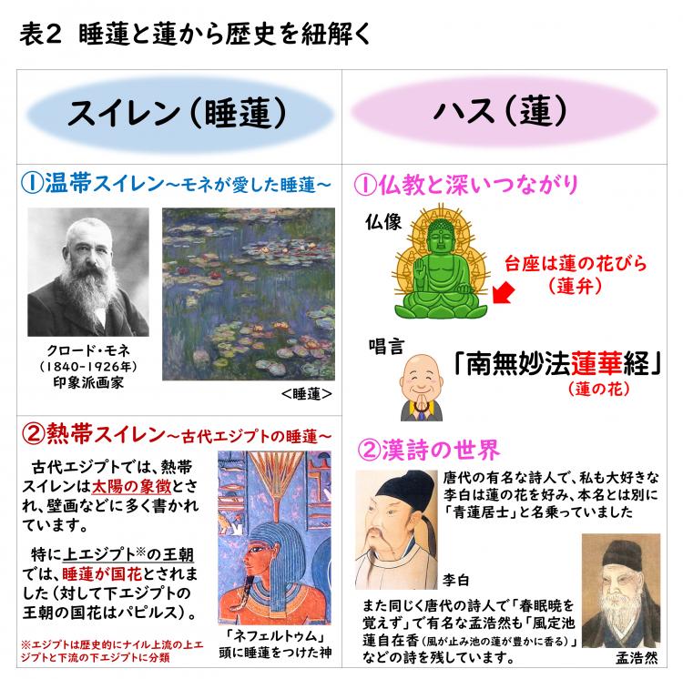 図2 睡蓮と蓮を象徴とした歴史